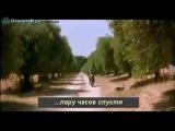 Как узнать время по ослиным яйцам))))